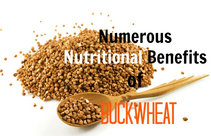 nutritional-benefits-of-buckwheat