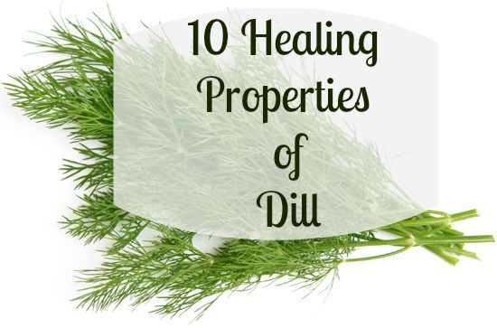 healing-properties-of-dill