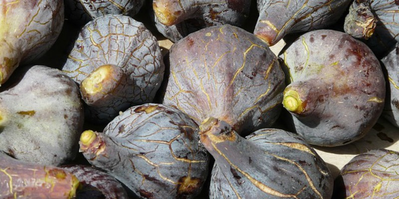 7 Amazing Health Benefits of Figs