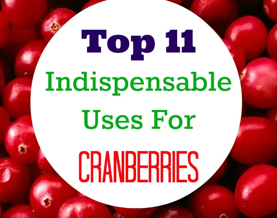 uses-of-cranberries